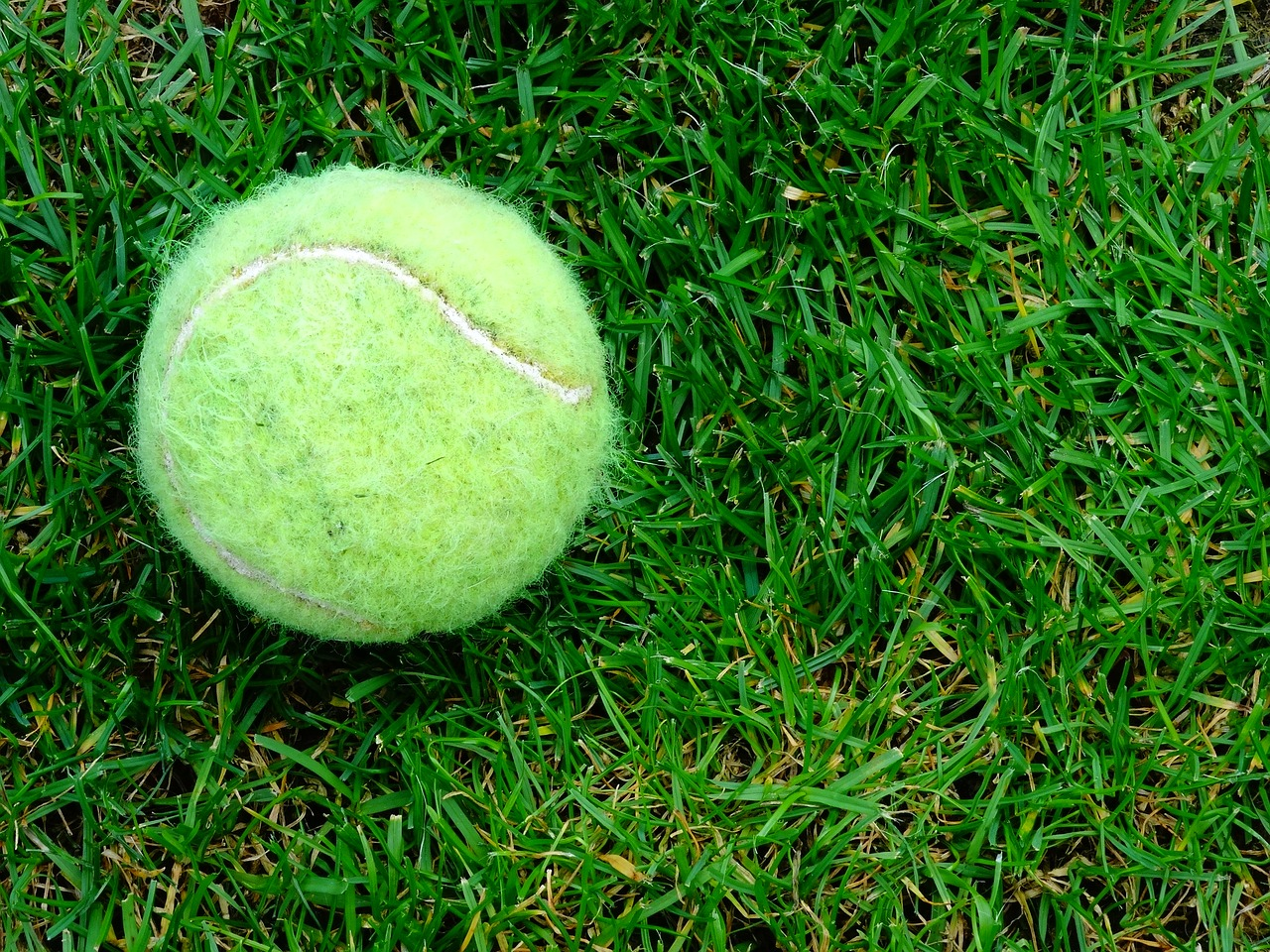 Watch Wimbledon live stream online