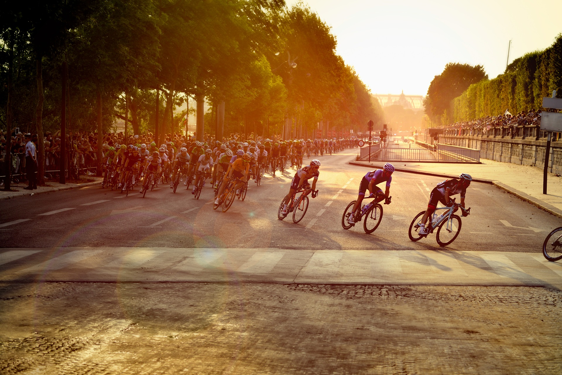 Stream Tour de France Online